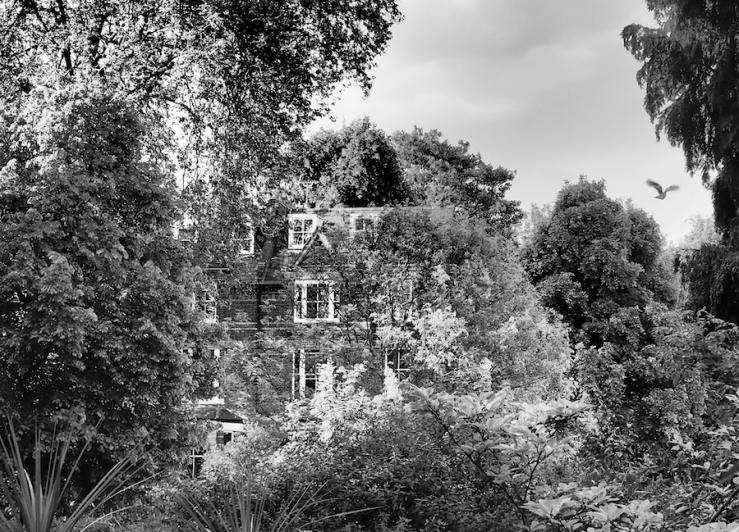 Gothic Hampstead
